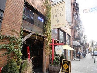 gray-dog-a-new-york