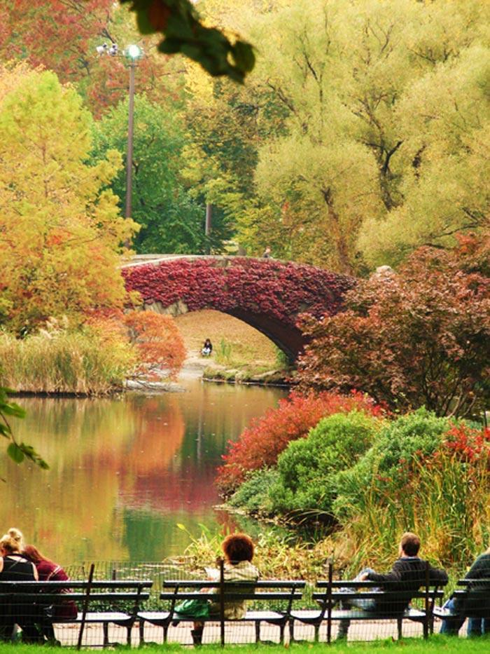 Central Park- Couleurs d'automne