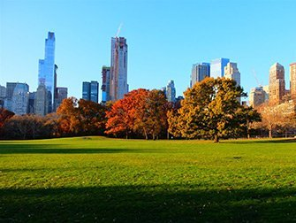 Central Park - Sheep Meadow en automne