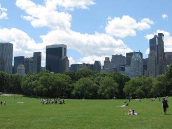 Central Park - Sheep Meadow et un ciel bleu