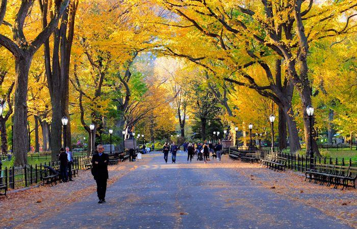 Central Park à New York - Automne