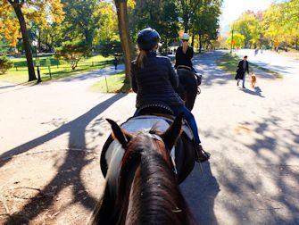 Central Park à New York - Balade à cheval