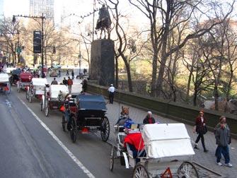 Central Park - calèches