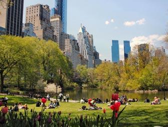 Lieux de rencontre dans la ville de New York