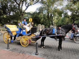 Tour en caleche a Central Park