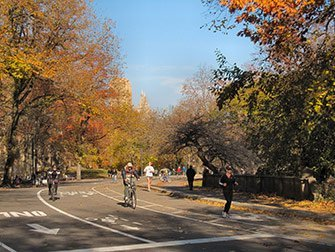 Location de vélos a New York - Central Park en automne