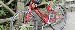 Location de vélos à New York City
