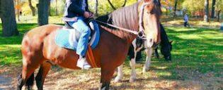 Balade à cheval à Central Park