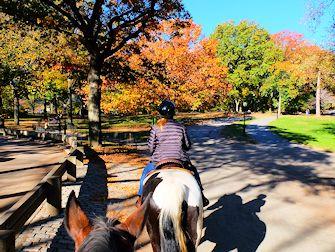 Balade à cheval à Central Park - Sentier