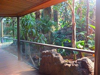 Billet pour le Central Park Zoo - Forêt Tropical