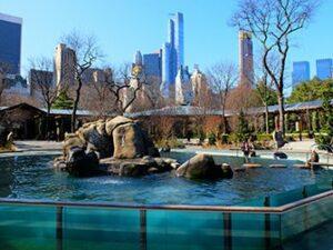 Billets pour le Central Park Zoo