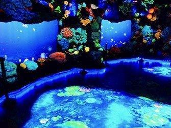 National Geographic Encounter Ocean Odyssey - Les profondeurs de l'océan